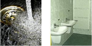 Sanitär, Bad, Heizung, Badrenovierung, Fliesenlegerarbeit, Heizungs-Baum in Zeulenroda